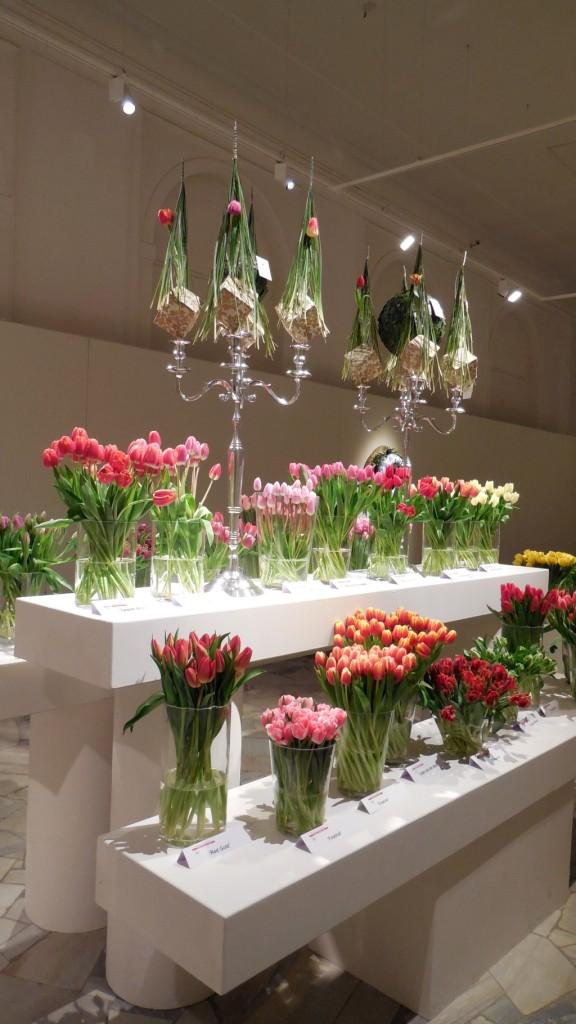 VII Wystawa Tulipanów